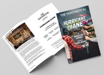 hurricane diane brochure_edited.jpg