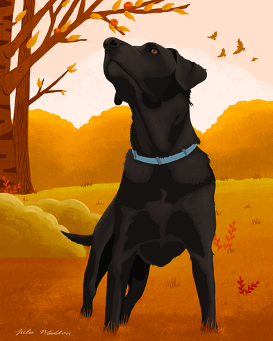 Fall with the Dog