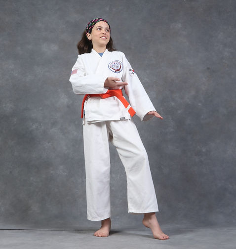 teen martial arts lessons, adult martial arts lessons, teen karate, adult karate