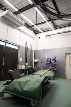 Salle d'opération équine.