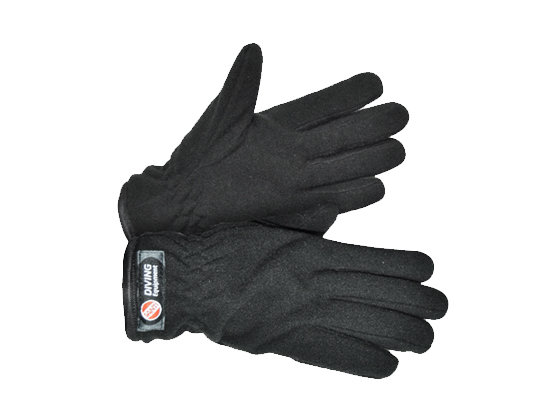 WINTER POLAR LINING FOR DRY GLOVES