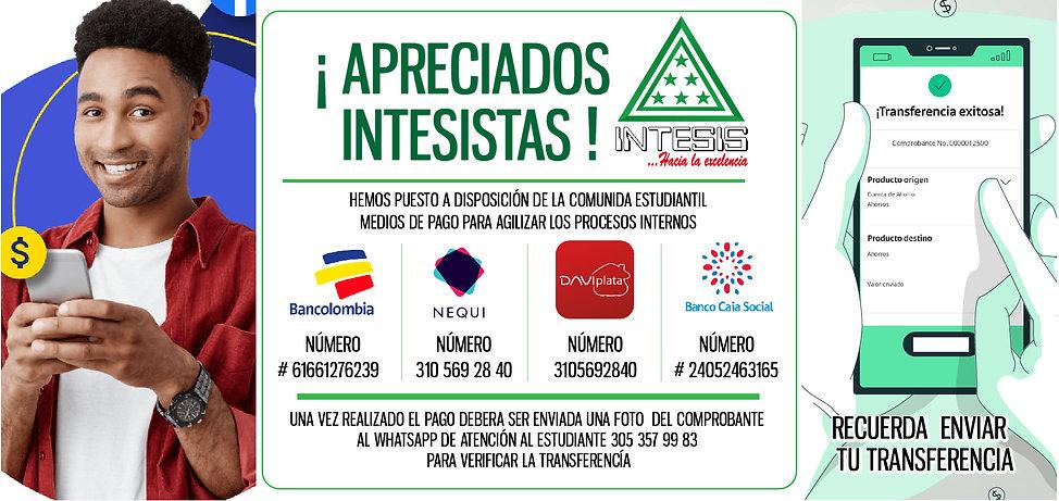 PAGOS-EN-LINEA.jpg