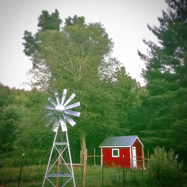 Happy 4th of July!  We finally assembled our windmill this weekend!! The windmill will aerate the duck pond to keep it clean & healthy.jpg.jpg.jpg
