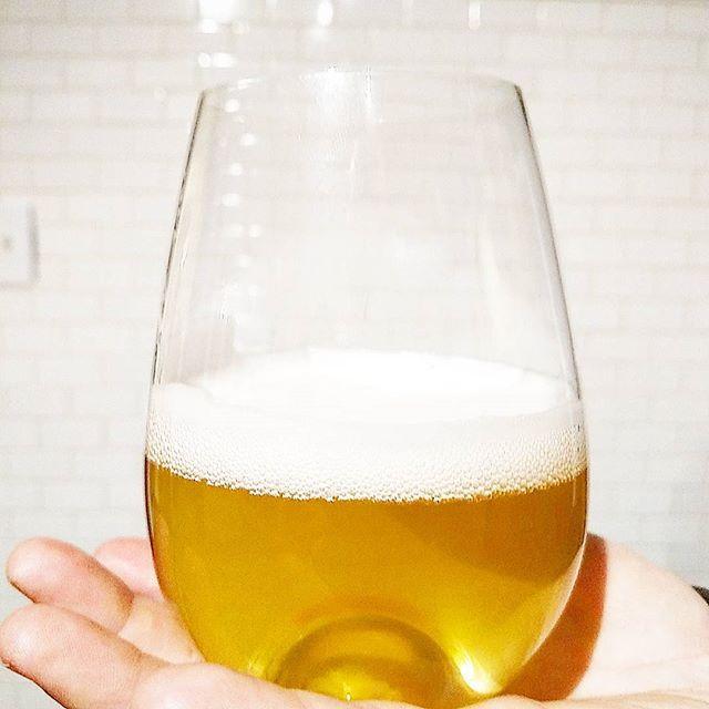Tasting beers at home_._._._._._._._._._