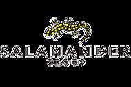 Salamander group logo