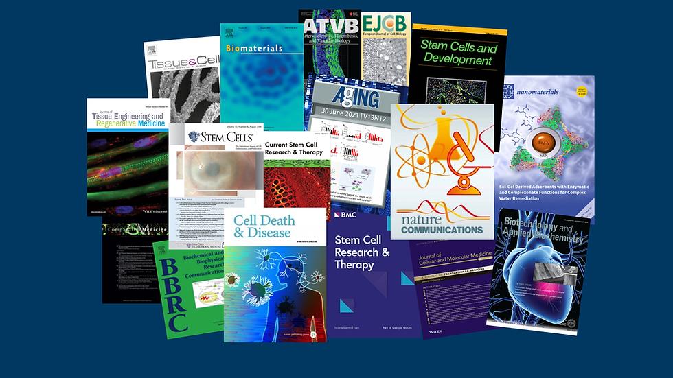 PubMed2.tif