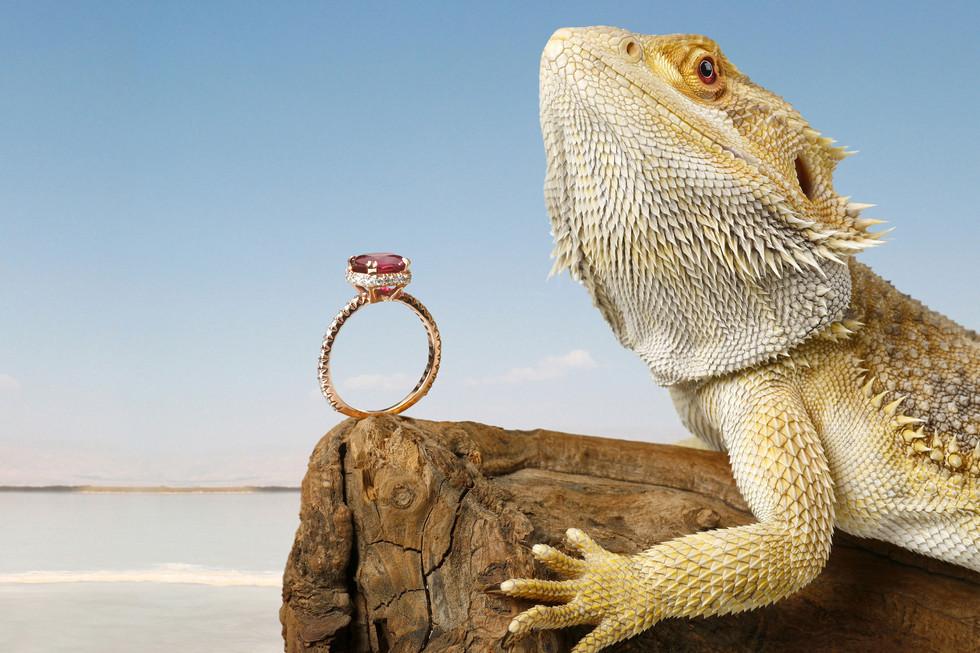 Jewelry By Kfir Ziv (1).jpg