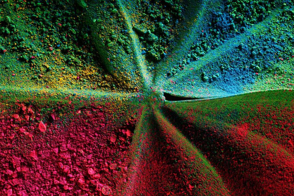 Color In Bloom By Kfir Ziv (18).jpg