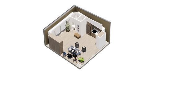 Plan_ADU_A41_C.jpg