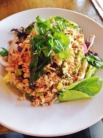 Chicken Larb Salad.png