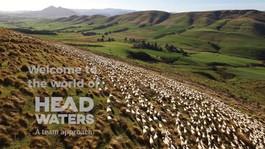Te Mana Lamb by Headwaters