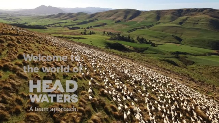 Te Mana Lamb by Headwaters