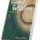guided-by-whales-Rebecca-Pillsbury-Duend
