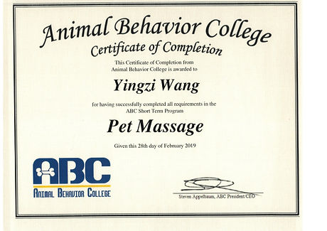 Pet Massage.jpg