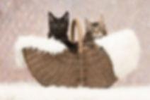 Suli en Kasba