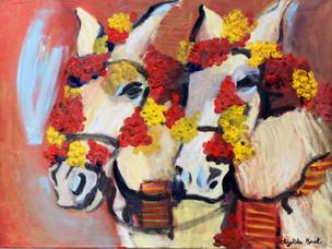 Cavallos de Fiesta