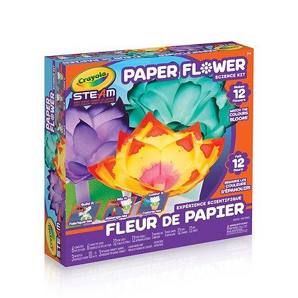 Expérience scientifique Fleur de papier