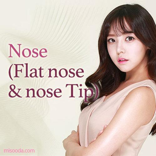 Nose(Flat nose & nose Tip)