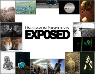 Uncommon Perspectives Exposed Book Cover