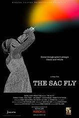 Sac Fly movie poster FINAL small.jpg