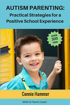 Autism Parenting Practical Strategies for a Positive School Experience book
