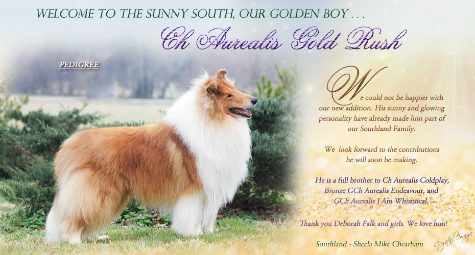 Aurealis Gold Rush ad.jpg