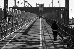 leicalogue 2013 - NYC L1002714