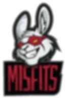 Misfits_edited.jpg