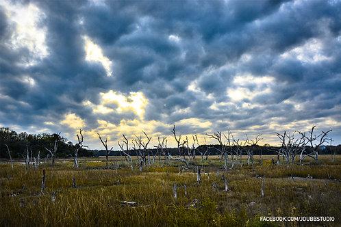 Big Beaufort Sky