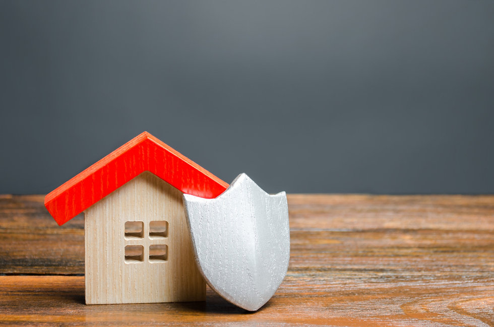 house-figurine-and-protective-shield-the