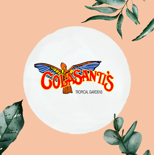 Colasanti's Tropical Gardens