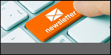 Newsletter Box 2.jpg