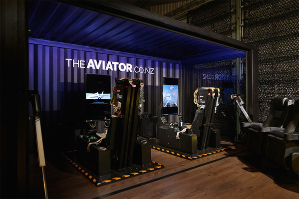 Networked Flight Simulators