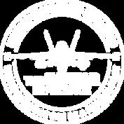 Aviator Experience Logo