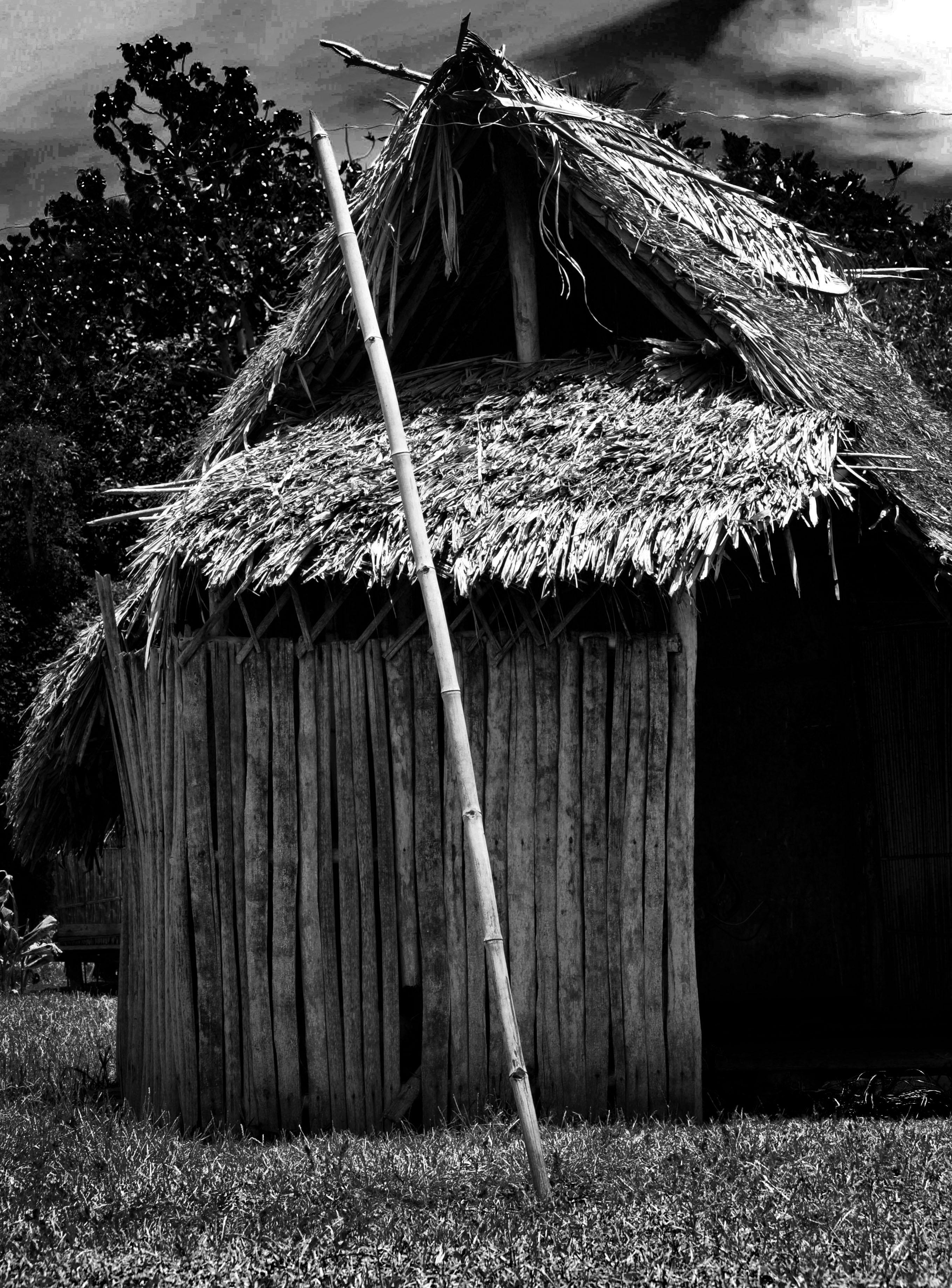 Tanna Village Hut