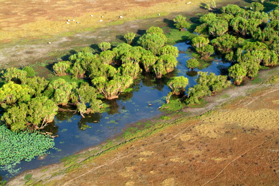 Aerial of Mary River