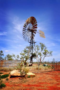 Queensland Windmill