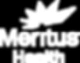 Meritus Logo.png