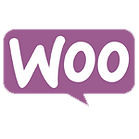 WooCommerce integration services