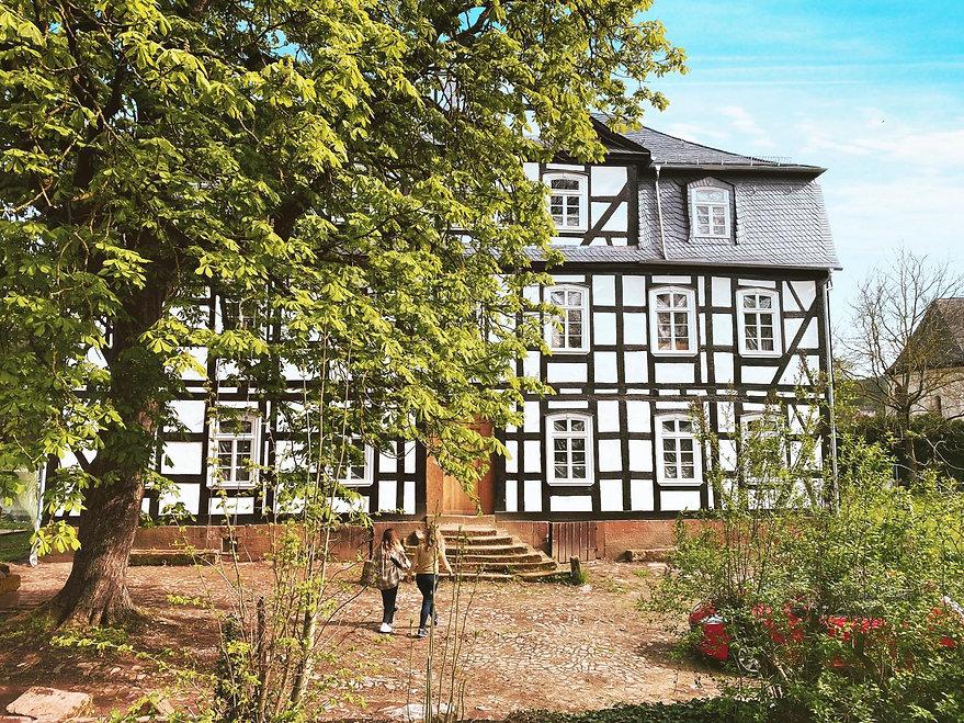 Fachwerkhaus- Baum