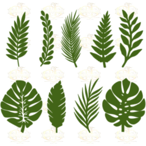 Set 13 SVG PNG DXF 9 different Tropical Leaves 1 for Paper Flowers Machine only