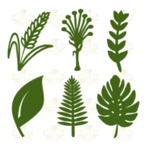 Svg PNG Dxf Set 6-6 different Leaves for Paper Flowers- MACHINE use Only