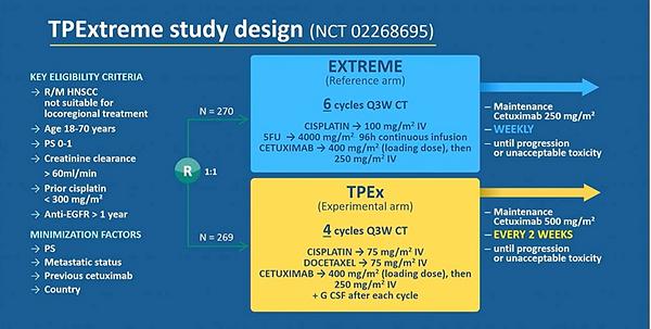 TPex design.png