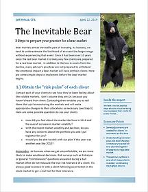 Bear Market White Paper Thumbnail.PNG