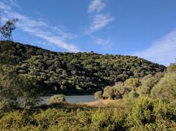 Monte Pantano