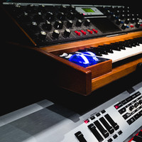 TOL Studio_-7.jpg