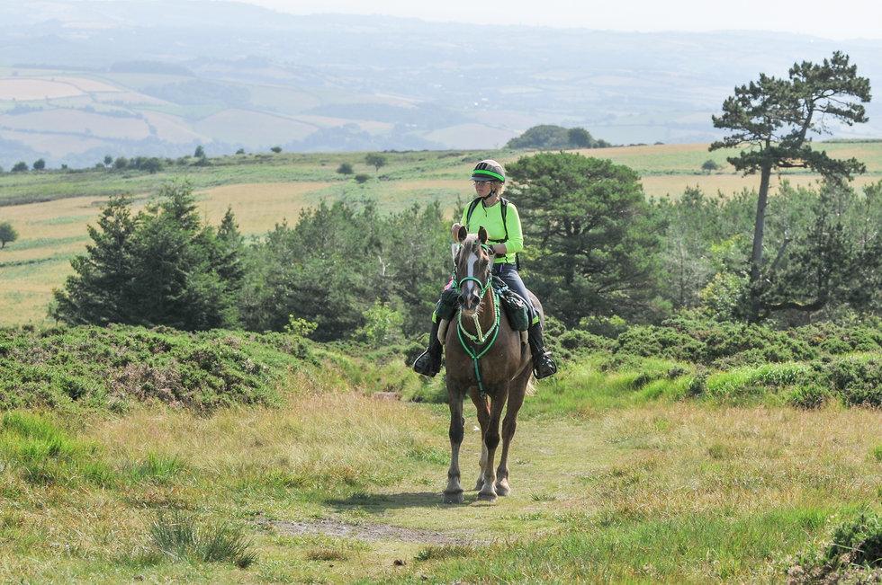 Dartmoor 0713 POR.jpg