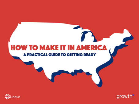 Ultimate Guide to preparing your startup to launch in the USA