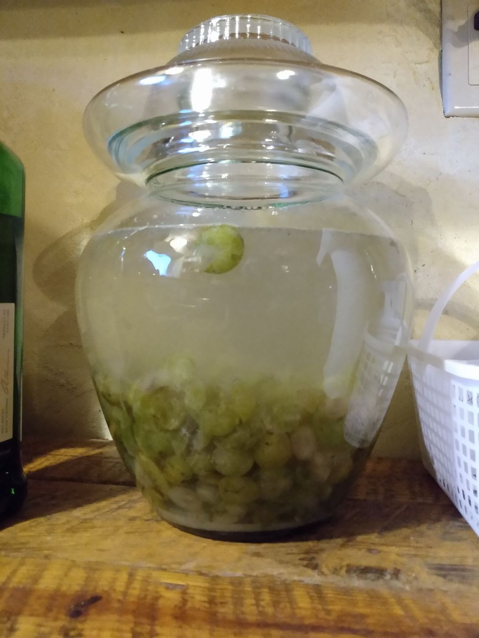 Grapes fermenting into wine.