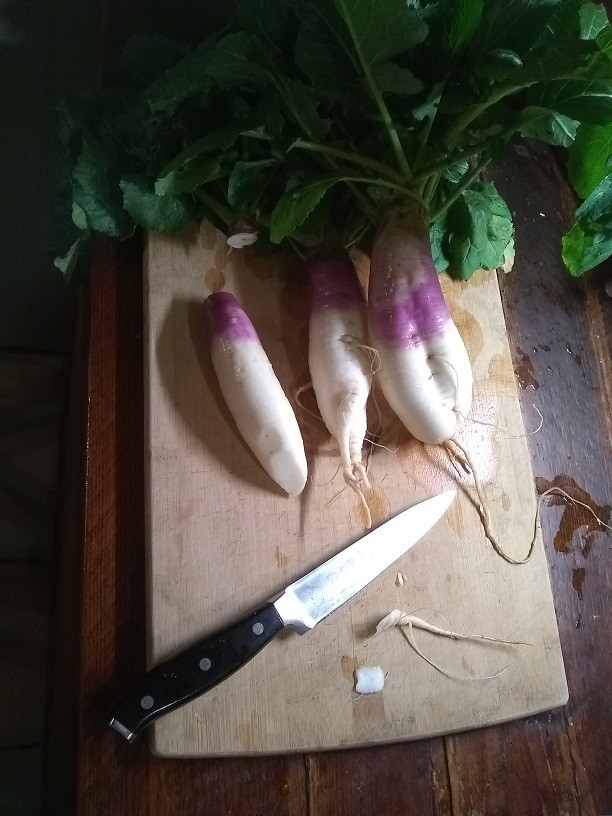 Turnips o a cutting board
